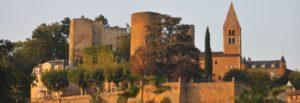 Vue de Châtillon d'Azergues